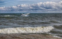 Speedboat On Lake Erie von John Bailey
