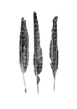 Threecrowsfeathers-c-sybillesterk