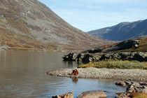 Zwei Bären am See von Olga Sander