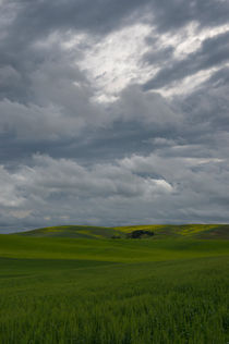 Stormy clouds over fields von Wolfgang Kaehler