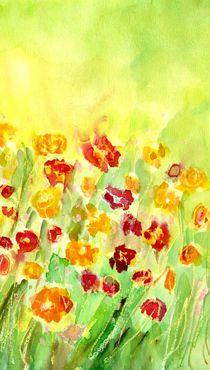 Menuett der Blumen von claudiag