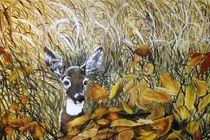Deer in Meadow by Bonnie Boerger