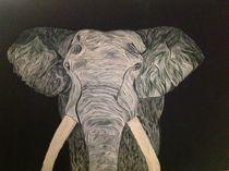 Elephant Tusk von Bonnie Boerger