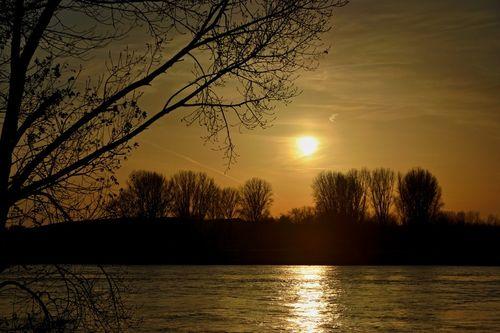 Rhein-nov-2014-005b