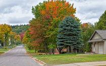 Colorful Neighborhood by John Bailey
