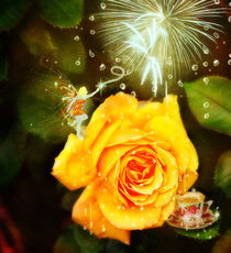 Fairy watering a lovely yellow rose in garden by Söndra Rymer