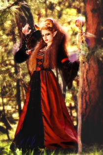 Maleficent in the forest with her magical staff von Söndra Rymer