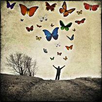 papillons von Frank Wöllnitz