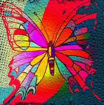Color Butterfly by Nico  Bielow