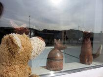 Ein Teddy-Bär und die Füchse von Olga Sander