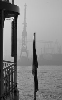 Kräne im Nebel von attiapictures
