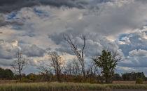The Flatlands Of The Indiana Dunes von John Bailey