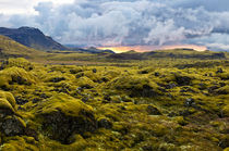 Surreal landscape with wooly moss at sunset in Iceland von creativemarc