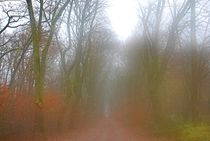 Herbst2014-253