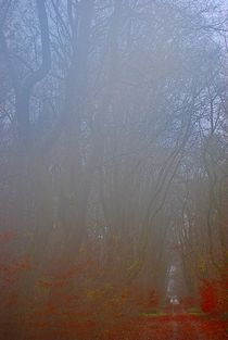 Herbst2014-246
