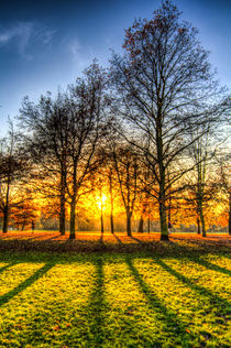 Autumn Arrives von David Pyatt