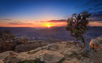 Der Grand Canyon (I) von Martin Büchler