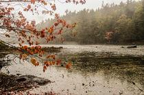 rainy day in fall von marie schleich
