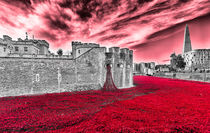 Poppies At The Tower - the very sky weeps von Graham Prentice
