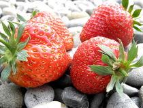 Erdbeeren von Birgit Knodt