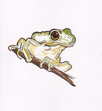 Frog in a tree by terrydonnelly