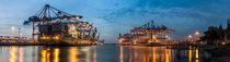 Hamburger Hafen - Burchardkai - Panorma von Pascal Betke