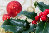 Weihnachtsdekoration von Tatjana Walter
