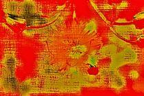 Farbige Welt 997 von leddermann
