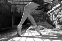 And Your Pointe is? von Michelle Sharp