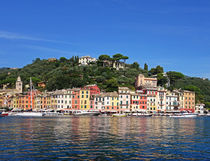 Portofino Waterfront by Robert Alexander