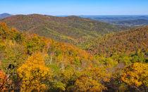 Blue Ridge Autumn Spectacular von John Bailey