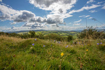 Welsh View von George Kay