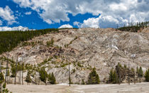 Roaring Mountain Yellowstone von John Bailey