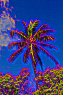 Festive Coconut Palm by John Bailey