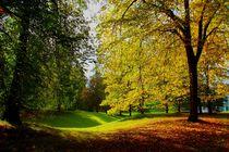 Herbstlandschaft im Sonnenschein von Renate Stremme