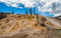 Heading To Palette Springs Yellowstone von John Bailey