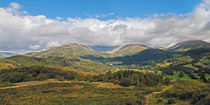 Fairfield Horseshoe by Roger Green
