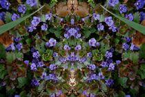 Revelation: Buddha by smallgladsong
