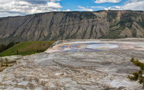 Yellowstone Contrasts von John Bailey