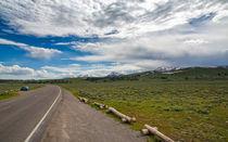 Yellowstone20140621-538a