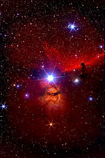 Pferdekopfnebel-Region - B 33 - Horsehead Nebula Region von monarch