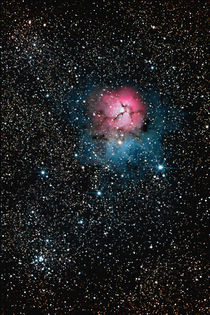 Trifid Nebel - Messier 20 - Trifid Nebula by monarch