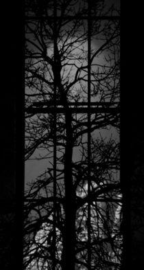 lights of the night XXVII von joespics