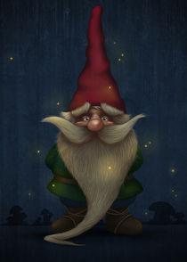 Gnome by Giordano Aita