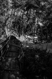 Der Wald von Guru Rinpoche IX von Helge Lehmann