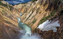 Yellowstone20140622-877a