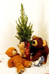 Der Weihnachtsbaum ist da! von Olga Sander