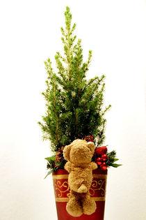 Ist der Baum groß! by Olga Sander