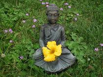 Buddha im Garten von Dörthe Huth