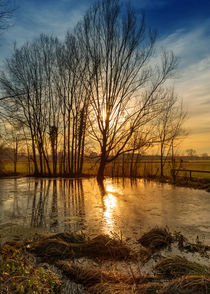 Sunset on pond by Giordano Aita
